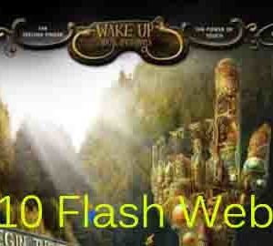 top flash wensites