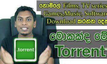 Torrent ගැන ඔබ නොදත් බොහෝ දේ